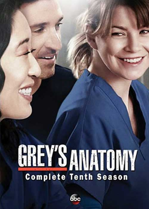 Greys Anatomy 10