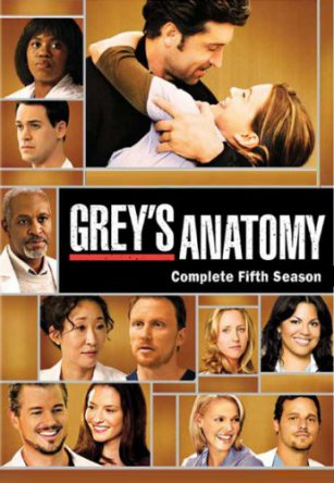 Анатомия Грей / Анатомия страсти / Greys Anatomy (Сезон 5) (2008)