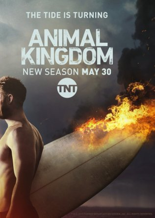 По волчьим законам / Animal Kingdom (2016)